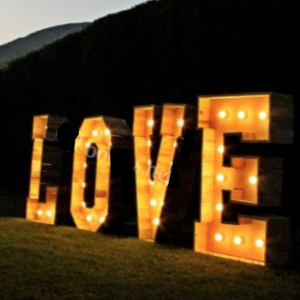 Wooden LOVE in lights 1